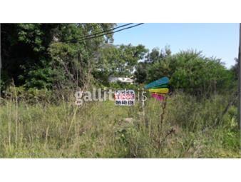 https://www.gallito.com.uy/terreno-en-pinamar-norte-a-200-mts-de-la-inter-inmuebles-16801524
