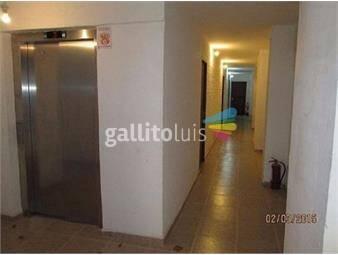 https://www.gallito.com.uy/monoambiente-amplio-rocha-y-martin-garcia-inmuebles-16827366