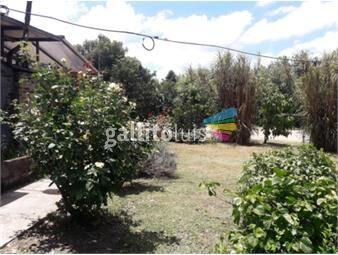 https://www.gallito.com.uy/ideal-vivienda-y-empresa-o-deposito-3100-m2-terreno-inmuebles-16854789
