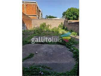 https://www.gallito.com.uy/alquiler-local-con-estacionamiento-varios-autos-belvedere-inmuebles-16854980