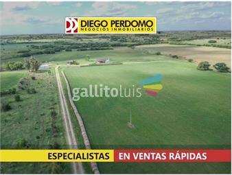 https://www.gallito.com.uy/campo-en-venta-49-5-has-san-jose-inmuebles-16907121