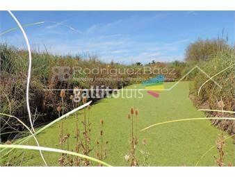 https://www.gallito.com.uy/venta-chacra-ruta-1-km-15300-30-hectareas-con-5200-limoneros-inmuebles-16953041