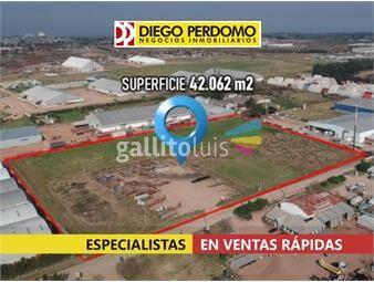 https://www.gallito.com.uy/predio-de-42062-m²-en-alquiler-montevideo-inmuebles-16991451