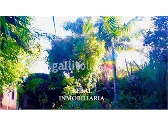 https://www.gallito.com.uy/en-1-planta-pintoresco-gran-padron-610m2-luz-inmuebles-17023285
