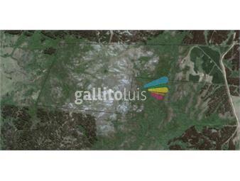 https://www.gallito.com.uy/campo-sierra-de-rocha-97has-con-vivienda-inmuebles-17042474