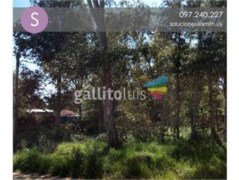 https://www.gallito.com.uy/venta-de-terreno-en-las-toscas-norte-inmuebles-17106282