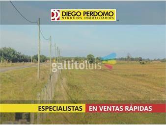 https://www.gallito.com.uy/campo-de-19-5-has-en-venta-camino-moro-inmuebles-17136652