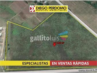 https://www.gallito.com.uy/predio-de-61406m²-en-venta-montevideo-inmuebles-15877260
