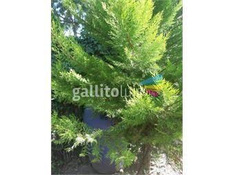 https://www.gallito.com.uy/excelente-propiedad-de-gran-porte-ideal-empresas-inmuebles-17195260