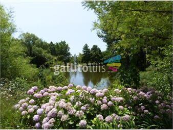 https://www.gallito.com.uy/en-zona-de-coutries-lindisima-planta-lo-que-no-hay-inmuebles-17221152
