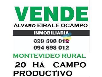 https://www.gallito.com.uy/campo-20-ha-montevideo-rural-cno-repetto-4251-inmuebles-14661932