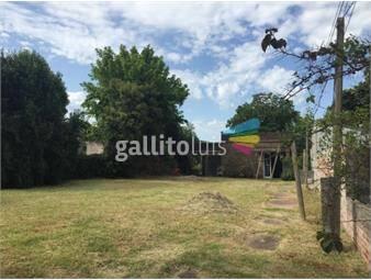 https://www.gallito.com.uy/casa-con-gran-terreno-inmuebles-17275381