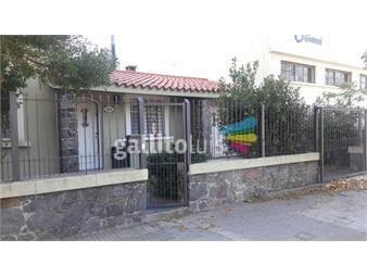https://www.gallito.com.uy/pu-250m2-comoda-luminosa-3-dorm-2-baños-gge-patio-jardin-inmuebles-19097057