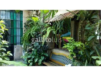 https://www.gallito.com.uy/muy-bonita-espaciosa-gge-patio-parrillero-imperdible-inmuebles-17525912