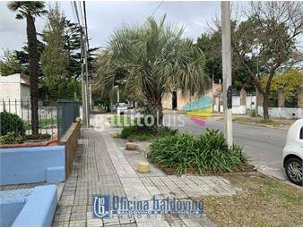 https://www.gallito.com.uy/baldovino-brazo-oriental-acha-y-ramon-marquez-inmuebles-17595948