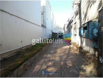 https://www.gallito.com.uy/baldovino-local-deposito-capurro-proxrblabaltasar-brum-inmuebles-17657063