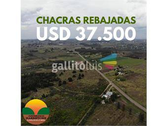 https://www.gallito.com.uy/vendo-3-chacras-de-3-has-sin-construcciones-precio-rebajado-inmuebles-17720962