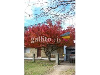 https://www.gallito.com.uy/casa-muy-linda-de-2-dormitorios-inmuebles-15008472