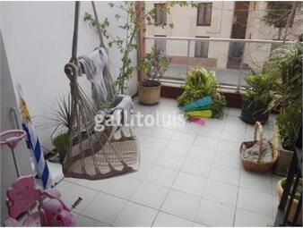 https://www.gallito.com.uy/apto-amplio-en-excelente-estado-y-ubicacion-cterraza-13m2-inmuebles-17742116