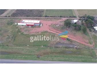 https://www.gallito.com.uy/local-industrial-sobre-ruta-5-inmuebles-17750532