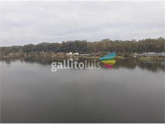 https://www.gallito.com.uy/carrasco-con-renta-lago-mayor-2-dorm-2-baños-2-gges-inmuebles-17795237