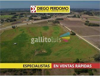 https://www.gallito.com.uy/campo-de-12-9-has-en-venta-puntas-de-valdez-inmuebles-17821211