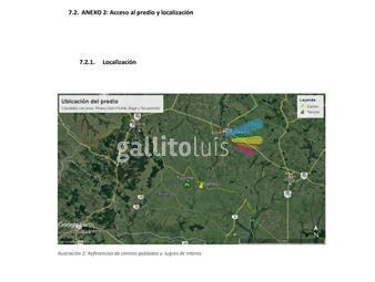 https://www.gallito.com.uy/alejandra-basigaluz-propiedades-tel-27077037-099033190-inmuebles-17837573