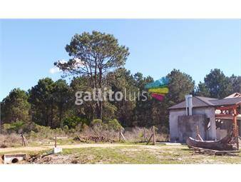 https://www.gallito.com.uy/el-pinar-terrenos-en-altos-del-pinar-km-30-de-giannattasio-inmuebles-17868547