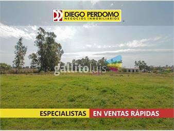 https://www.gallito.com.uy/terreno-de-2528-m²-en-venta-ciudad-del-plata-inmuebles-16203983