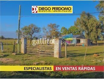 https://www.gallito.com.uy/chacra-de-12774-m²-en-venta-ciudad-del-plata-inmuebles-17516691