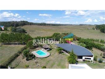 https://www.gallito.com.uy/hermosa-chacra-a-3-km-de-la-ciudad-de-tacuarembo-inmuebles-17991459
