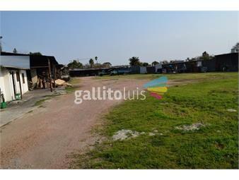 https://www.gallito.com.uy/venta-terreno-belvedere-inmuebles-18002710