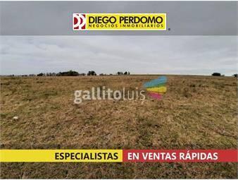 https://www.gallito.com.uy/campo-de-171-has-en-venta-rio-negro-inmuebles-18022714
