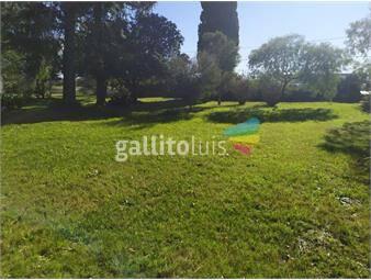 https://www.gallito.com.uy/casa-sobre-ruta-8-son-10600m2-inmuebles-18069835