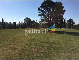 https://www.gallito.com.uy/cumbres-de-carrasco-inmuebles-18094837