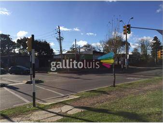 https://www.gallito.com.uy/local-esquina-inmuebles-14901799