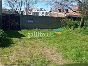 https://www.gallito.com.uy/maissonave-propiedades-inmuebles-12560012
