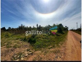 https://www.gallito.com.uy/campo-minutos-de-las-pierdas-y-montevideo-forestal-o-cria-inmuebles-18286688