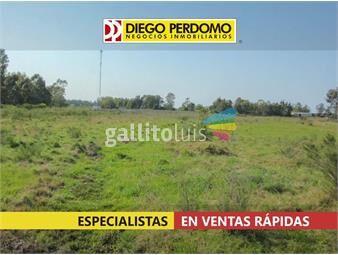 https://www.gallito.com.uy/terreno-de-6000m²-en-venta-ciudad-del-plata-inmuebles-18374021
