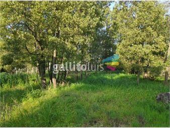 https://www.gallito.com.uy/acepta-permuta-buen-terreno-550-m2-el-pinar-calle-cabañeros-inmuebles-18320211