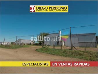 https://www.gallito.com.uy/casas-de-campo-en-alquiler-libertad-inmuebles-18417789