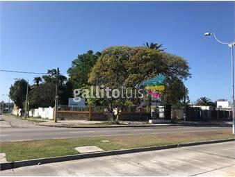 https://www.gallito.com.uy/lote-ideal-para-construir-en-el-cerrito-inmuebles-18443916