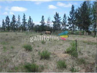 https://www.gallito.com.uy/sobre-ruta-8-km-33-22-has-inmuebles-13917841