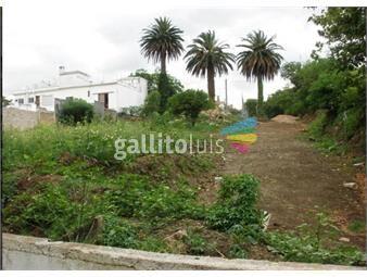 https://www.gallito.com.uy/venta-terreno-esquina-en-brazo-oriental-inmuebles-18478984
