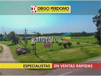 https://www.gallito.com.uy/predio-de-86100-m²-en-venta-en-ruta-n-1-km-48-inmuebles-18499492