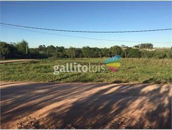 https://www.gallito.com.uy/terrenos-en-nuevo-berlin-inmuebles-18525289