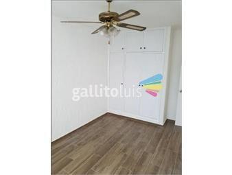 https://www.gallito.com.uy/apartamento-en-alquiler-cerro-largo-esq-yi-centro-inmuebles-18535225