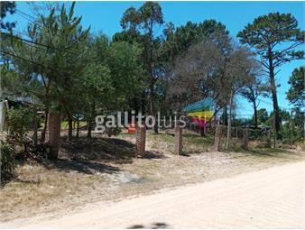 https://www.gallito.com.uy/terreno-proximo-al-bus-inmuebles-18639388