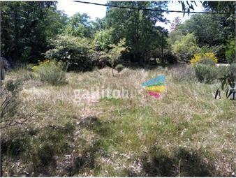 https://www.gallito.com.uy/terreno-en-parque-del-plata-sobre-calle-10-inmuebles-18661051