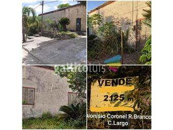 https://www.gallito.com.uy/venta-gran-terreno-con-inmueble-en-rio-branco-inmuebles-18687645